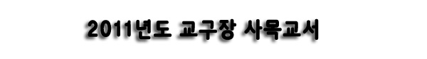 message2011-00.jpg